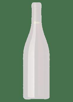 Fitvine Prosecco Total Wine More