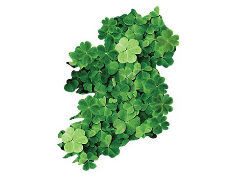 Irish History Why Do We Drink On St Patricks Day Total Wine More