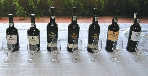 portuguese wine country choice image